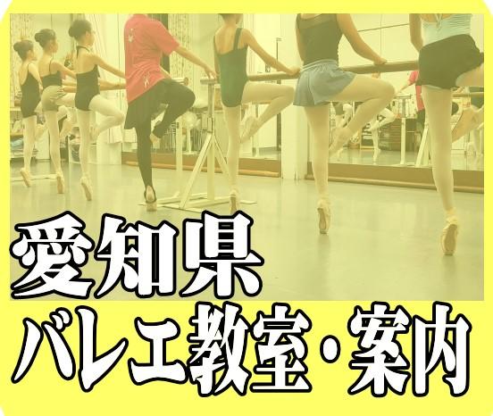 愛知県バレエ教室案内